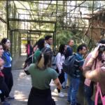 Visita técnica Zoo Parque de Itatiba